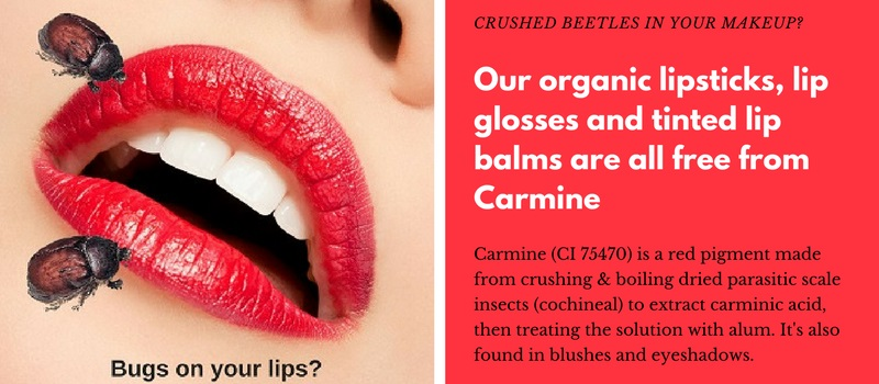 Naturally Safe Cosmetics only stocks cosmetics that are free from Carmine.